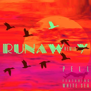 Runaway (Remix) - Single Mp3 Download