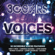Various Artists - 30 Stars: Voices
