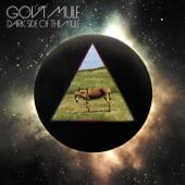Gov't Mule - Wish You Were Here