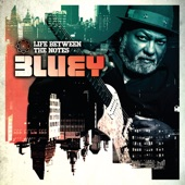 Bluey - Saints And Sinners
