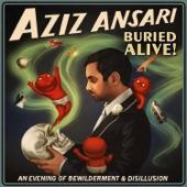 Aziz Ansari - Marriage is an Insane Proposal