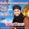 Labaik Muhammad Salle Alla Vol 8 Islamic Naats