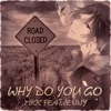 Why Do You Go feat Jenny EP