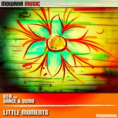 Little Moments (feat. Grace & Osmo) - Single