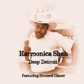 Harmonica Shah - Don't Kick Me to the Curb (feat. Howard Glazer)