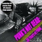 Punk's Not Dead - 30 Years of Punk