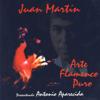 Arte Flamenco Puro - Juan Martin