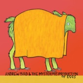 Andrew Bird - Measuring Cups