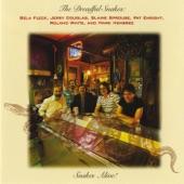The Dreadful Snakes - Cash on the Barrelhead