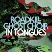 Roadkill Ghost Choir - Down & Out