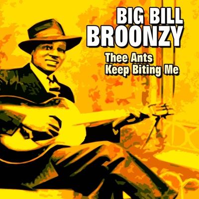 Thee Ants Keep Biting Me - Big Bill Broonzy