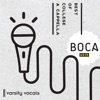 BOCA 2015: Best of College A Cappella