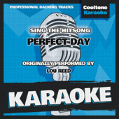 Perfect Day (Originally Performed by Lou Reed) [Karaoke Version]