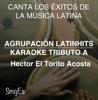 Instrumental Karaoke Series: Hector El Torito Acosta (Karaoke Version) - Agrupacion LatinHits