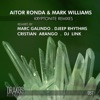 Kryptonite Remixes, Aitor Ronda & Mark Williams
