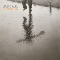 The Twelve Pins by Bully's Acre on Apple Music