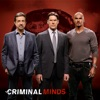Criminal Minds, Season 9 wiki, synopsis
