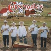 Los Caporales de Santa Ana Amatlan - Que Milagro Chaparrita