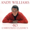 It's the Most Wonderful Time of the Year by Andy Williams iTunes Track 7