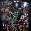 God's Will - William Cooper