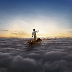 The Endless River (Deluxe Edition)