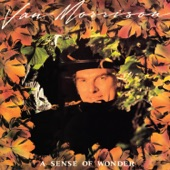 Van Morrison - What Would I Do Without You