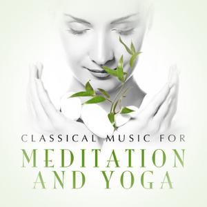 Verschillende artiesten - Classical Music for Meditation and Yoga