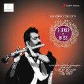 [Download] Silence Is Bliss (feat. Pandit Vishwa Mohan Bhatt) MP3