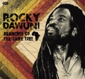 Rocky Dawuni - Get Up, Stand Up