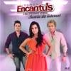 Banda Encantus, Vol. 6