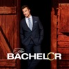 The Bachelor, Season 19 wiki, synopsis