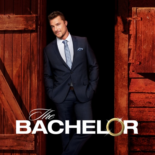 The Bachelor, Season 19 poster