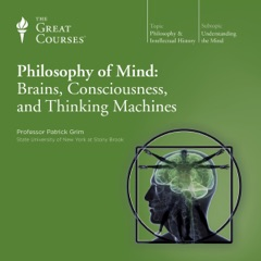 Philosophy of Mind: Brains, Consciousness, and Thinking Machines