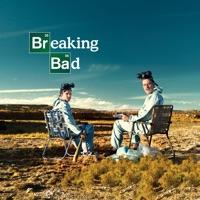 breaking bad staffel 2 folge 4