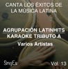 Instrumental Karaoke Series: Varios Artistas, Vol. 13 (Karaoke Version)