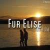 Fur Elise - For Elise illustration