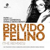Brivido Felino (Mark Di Meo & Gerardo Smedile Remix) [feat. Stefy Gamboni & Daniele 'Bengi' Benati] - Papik