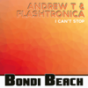 I Can t Stop - Andrew T & Flashtronica mp3