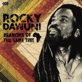 Rocky Dawuni - Black Star