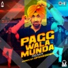 Pagg Wala Munda Remix Single