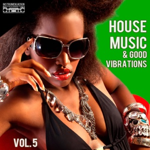 House Music & Good Vibrations, Vol. 5 - Various Artists - Various Artists