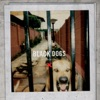 Black Dogs - EP, Boys Night Out