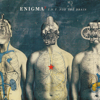 T.N.T. For The Brain - EP - Enigma