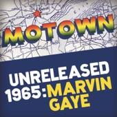 Marvin Gaye - I've Got Your Number