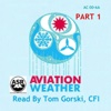 Aviation Weather, Pt. 1 (AC 00-6A) - Tom Gorski