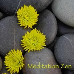 Méditation Zen – Musique douce de détente et méditation, bien-être et sophrologie, raja yoga et relaxation
