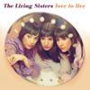 The Living Sisters - How Are You Doing? artwork