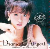 ドラマティック・エアポート -AKINA TRAVEL SELECTION-
