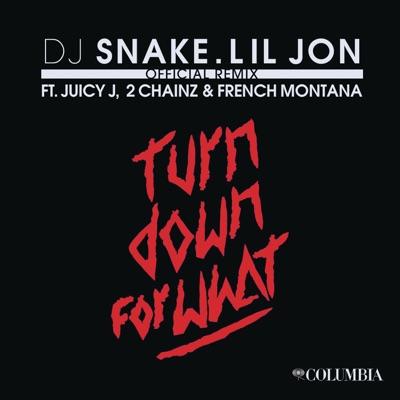 Turn Down For What Remix Feat Juicy J 2 Chainz French Montana Single Dj Snake Lil Jon Dj Snake Lil Jon Mp3 Download Apinakapina Com
