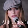Ani Lorak - Забирай artwork